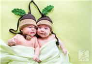 双胞胎的科学喂养方法