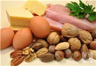 最佳蛋白质食物