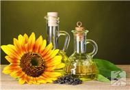 植物油是什么