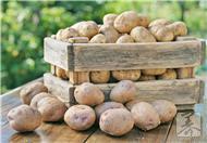 土豆的各种神奇秒用,可惜很少人知道