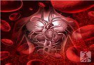 血热是怎么回事