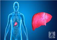 肝阳虚与肝阴虚的区别有哪些