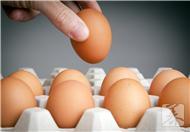 蒸蛋器的使用方法是什么?