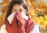 冬季多喝红茶 可预防流感