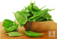 菠菜——補血抗衰老的秘方