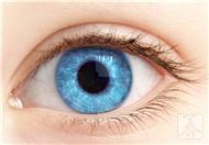 怎样让眼睛恢复视力
