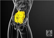 肠粘膜脱落的症状,肠粘膜脱落的原因