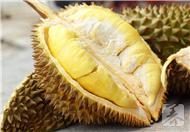 榴莲可治痛经 5种异味食物竟是至宝