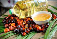 葡萄籽油的功效与作用