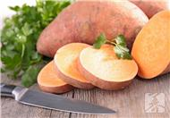 冬季的红薯千万不能随便吃