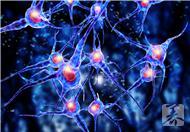 中枢神经系统感染了怎么办