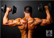 吃出来的肌肉,想想都兴奋