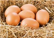 如何制作烤鸡蛋吃呢?