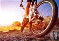 教你如何骑自行车瘦腰瘦小腿