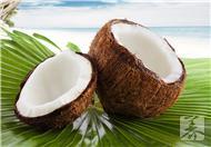 椰子蟹可以吃吗