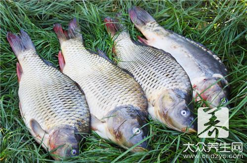 What is practice of pineapple fish the daily life of a family
