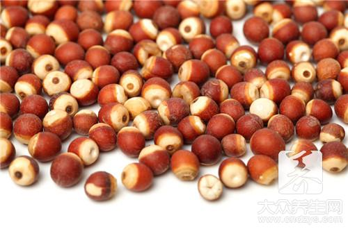 What does the effect of congee of red jujube of Gorgon fruit yam have?