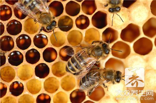 蜂胶什么时候吃效果最好?