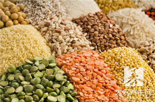 What food grains other than wheat and rice cannot eat together