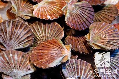 How is scallop of garlic Chengdu evaporate done? Advanced chef is operated so