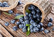 蓝莓果酱怎么吃
