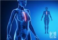 胸锁关节炎的症状有哪些