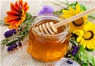 蜂蜜有八种对身体有益功能