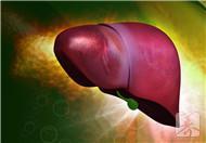 肝局灶性增生會消失嗎