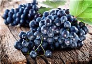 葡萄皮白霜是农药、吃樱桃能补铁、石榴籽不能吃?辟谣:都是假的