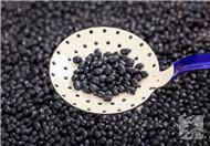 可以补肾、减肥、乌发的陈醋泡黑豆
