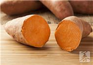 番薯是寒性食物吗