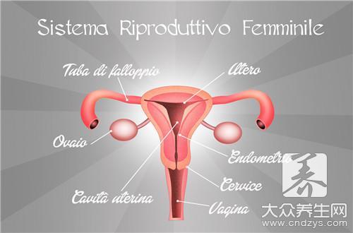 生殖器红疹