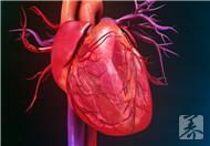 心跳时快时慢怎么回事?如何治疗