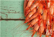 虾皮能放多久