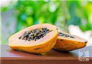 木瓜的功效与作用及副作用