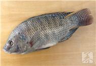 罗非鱼怎么做好吃
