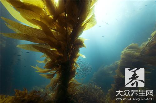 Kelp is belonged to alkalescent acidity still