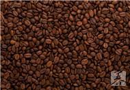 咖啡豆和可可豆