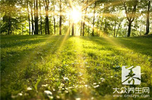 春季更利养生食物(1)