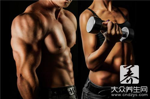 The equipment with experienced best abdominal muscle