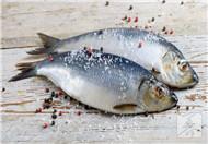 淡水鲳鱼怎么做好吃