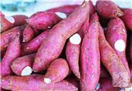 白薯的营养价值
