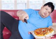 白天不想吃晚上食欲强