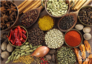 生酮饮食疗法是什么