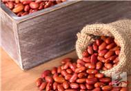 赤小豆红豆祛湿效果怎么样呢?
