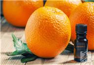 橘子放冰箱