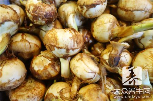 产妇可以吃菌菇类吗
