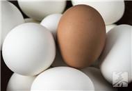 哪些人不适合吃鹅蛋
