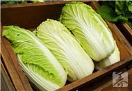 拉肚子可以吃白菜吗?