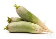 肾病能吃萝卜吗